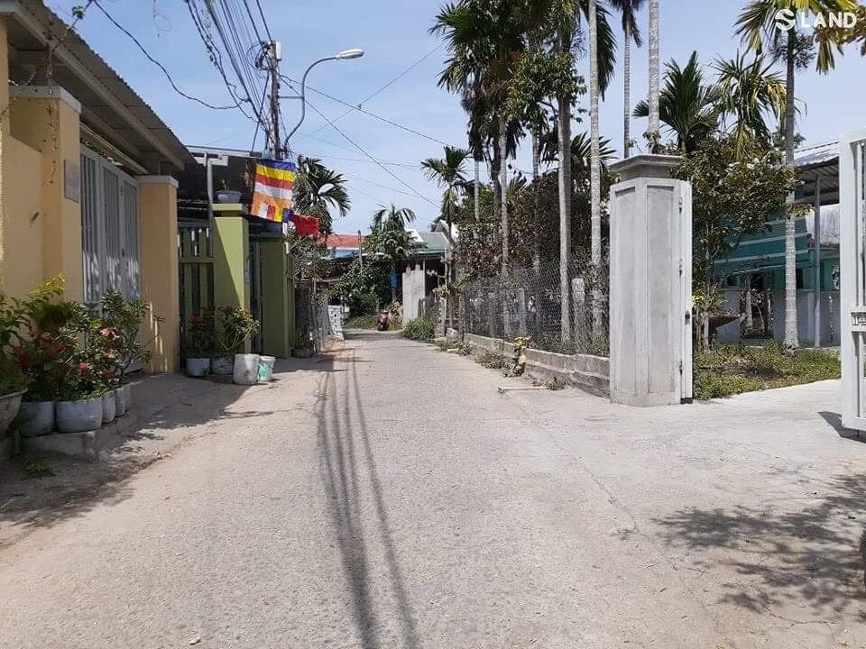 MT Hoàng Thị Loan