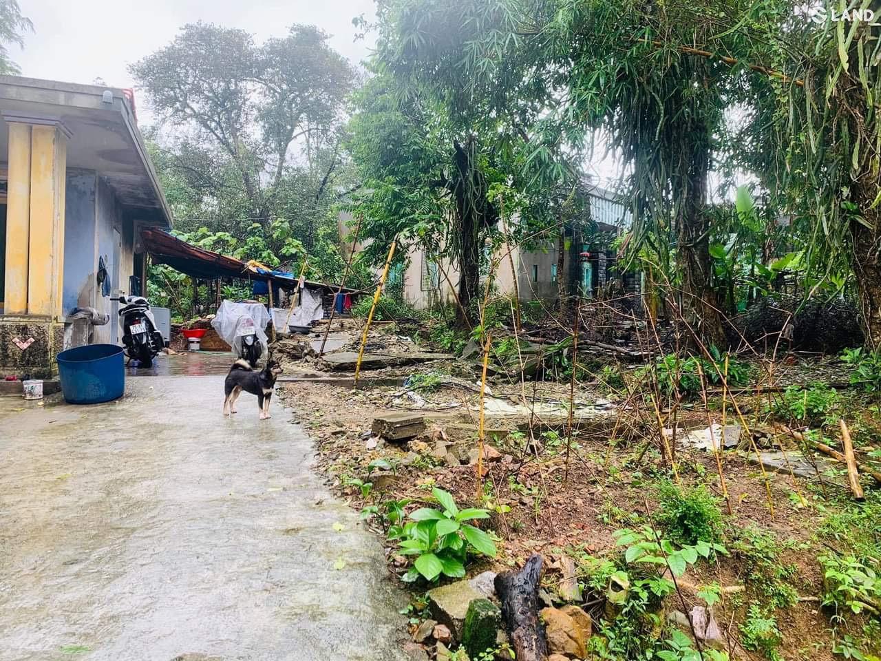 Bán đất kiệt Trần Thái Tông gần Kqh Bàu Vá